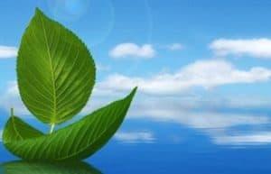 Su Kirliliği Kontrolü Yönetmeliği 2