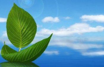 Su Kirliliği Kontrolü Yönetmeliği 1