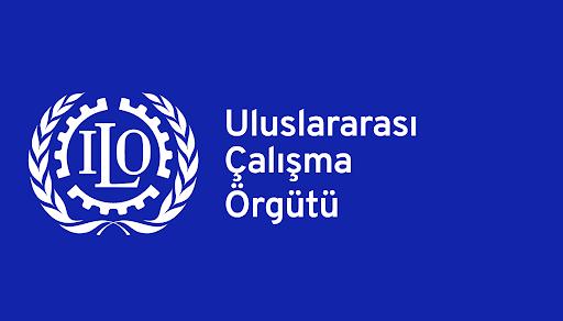 ILO 144 Nolu Üçlü Danışma Uluslararası Çalışma Standartları Sözleşmesi