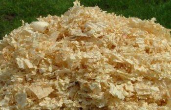 Odun Tozlarının İnsan Sağlığı Üzerindeki Etkileri 1
