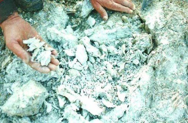 Asbest Tozlarının İnsan Sağlığı Üzerinde Etkileri