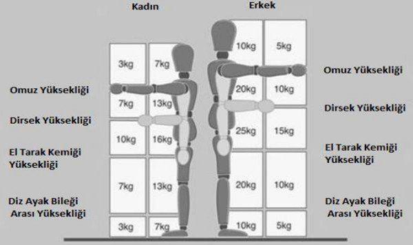 Elle Taşıma İşleri Standartları 2
