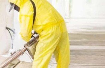 Küçük Ölçekli İşletmeler İçin İş Sağlığı ve Güvenliği Destekleri