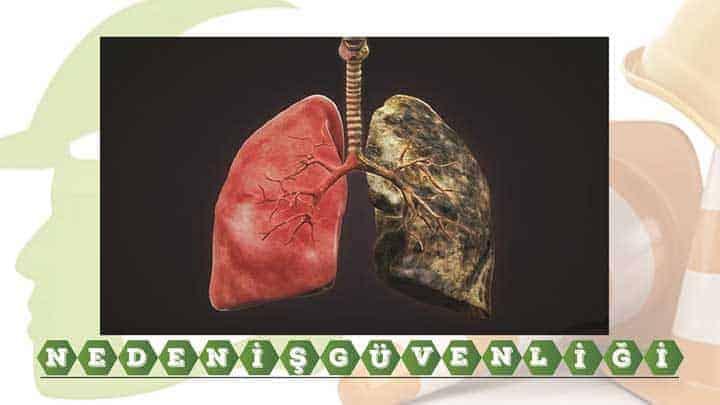 Sağlık İçin: Kanser