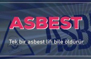 Asbest Sınır Değeri 3