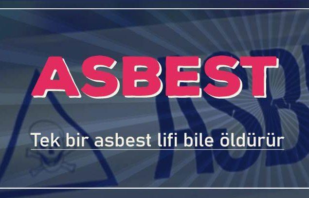 Asbest Sınır Değeri 2