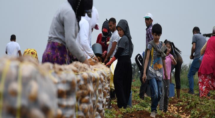 6 yılda 10 binden fazla kişi tarım ilaçlarından zehirlendi 9