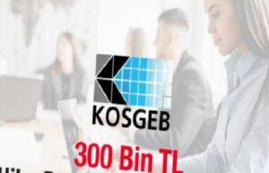 KOSGEB'in 300 bin TL geri ödemesiz hibe desteği başladı! 2